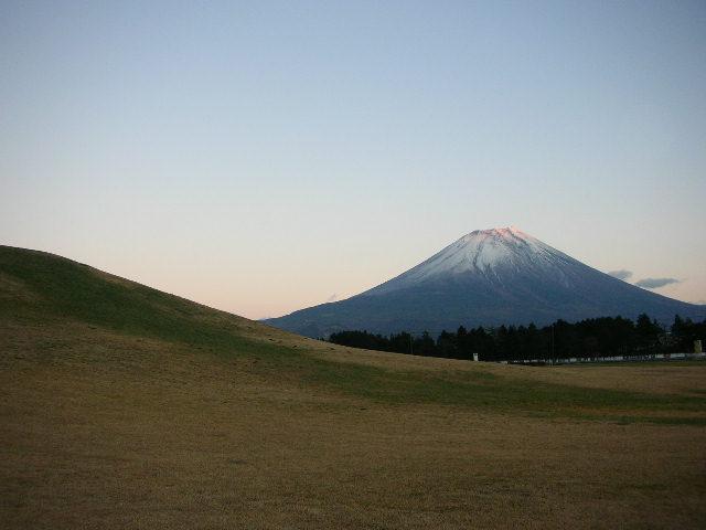 Emblème majestueux et fierté du Japon.